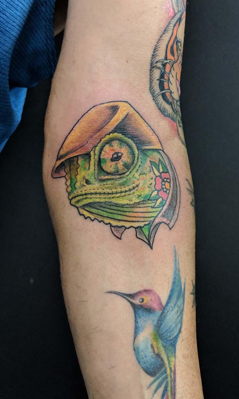 chameleon tattoo color old school קעקוע זיקית אול סקול צבעוני ירוק