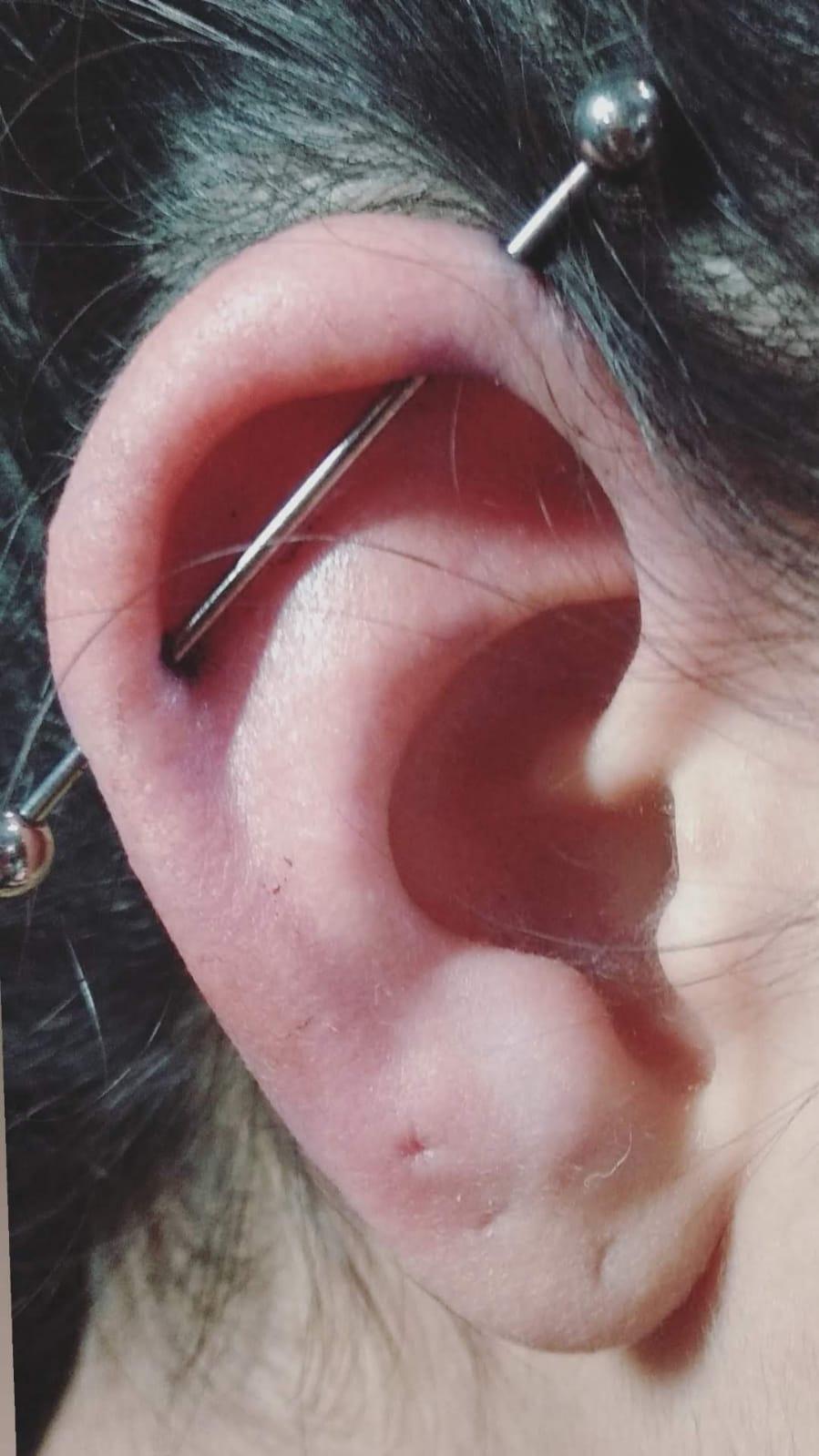 industrial piercing barbel  פירסינג אינדסטריאל חוצה אוזן הליקס קדמי ניקוב כפול מוט טיטניום