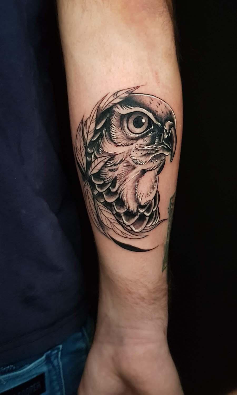 neo traditional falcon tattoo black קעקוע בז ציפור נאו טרדישיונל