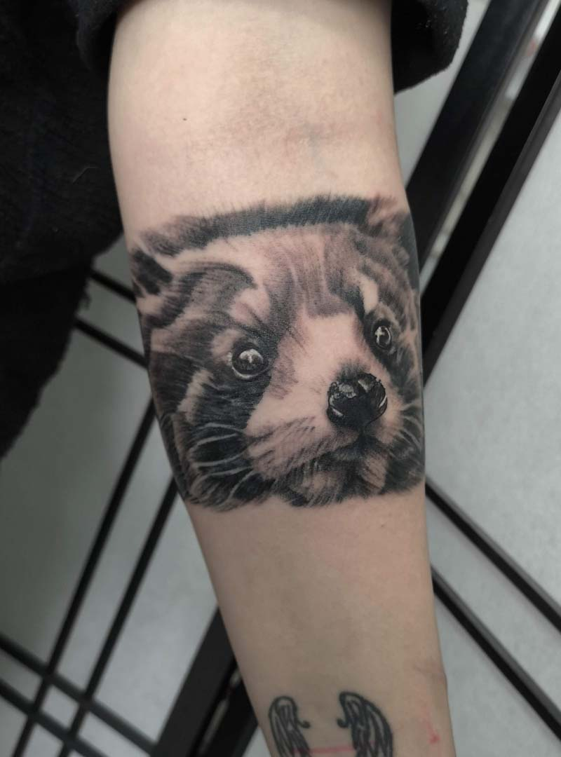 red panda realistic black and gray קעקוע פנדה אדומה ראליסטי חיות